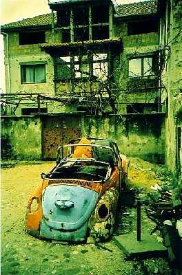 Bosnian Bug